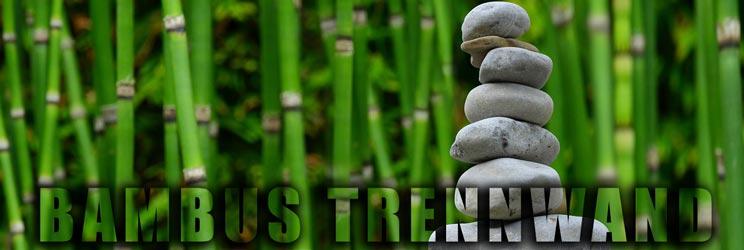 Bambus Trennwand als Sichtschutz