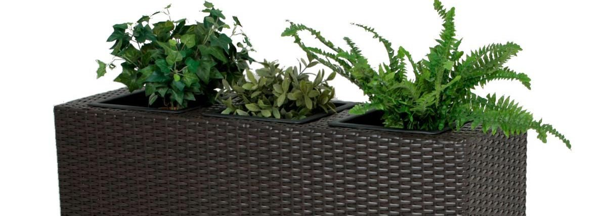Pflanzen-Raumteiler als Trennwand